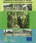 problem_of_forestry_sector-